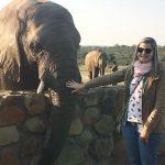 Dica de viagem: 10 dias na África do Sul